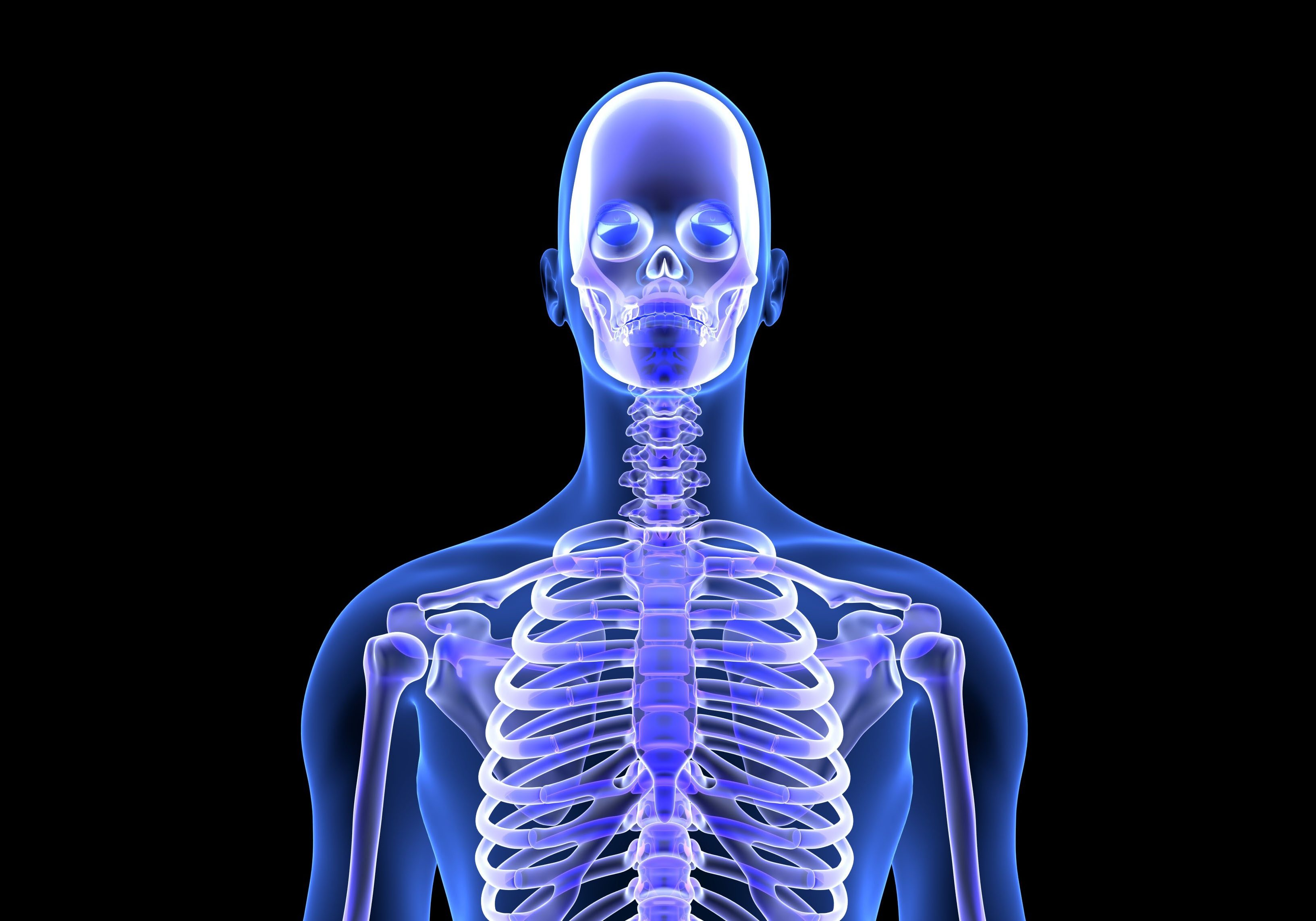 Blue Human Anatomy Body and Skeleton. 3D Scan render on black background
